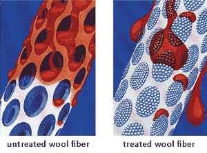 simulation of wool treated with Fiber ProTector