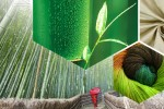 Welcome to the Wonderful World of Bamboo Silk